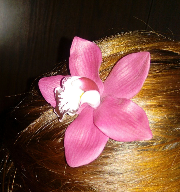Фото №3 к отзыву покупателя Рыбь Рубин о товаре Орхидея бордовый цимбидиум