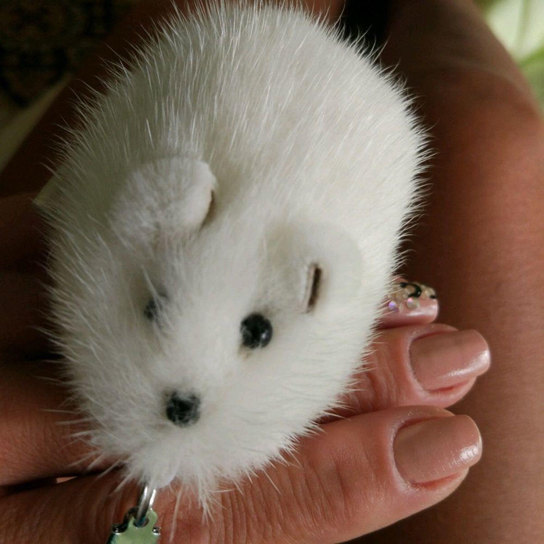 Photo №1 к отзыву покупателя Irina о товаре Мышка сувенир, брелок из меха норочки