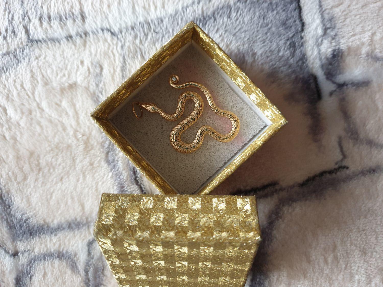Фото №1 к отзыву покупателя Алена Шеремет о товаре Кулон «Змейка»
