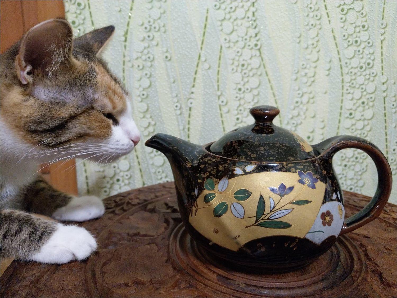 Фото №1 к отзыву покупателя Александр о товаре Винтаж: Чайник японский чайник фарфор подарок чайная церемония япония