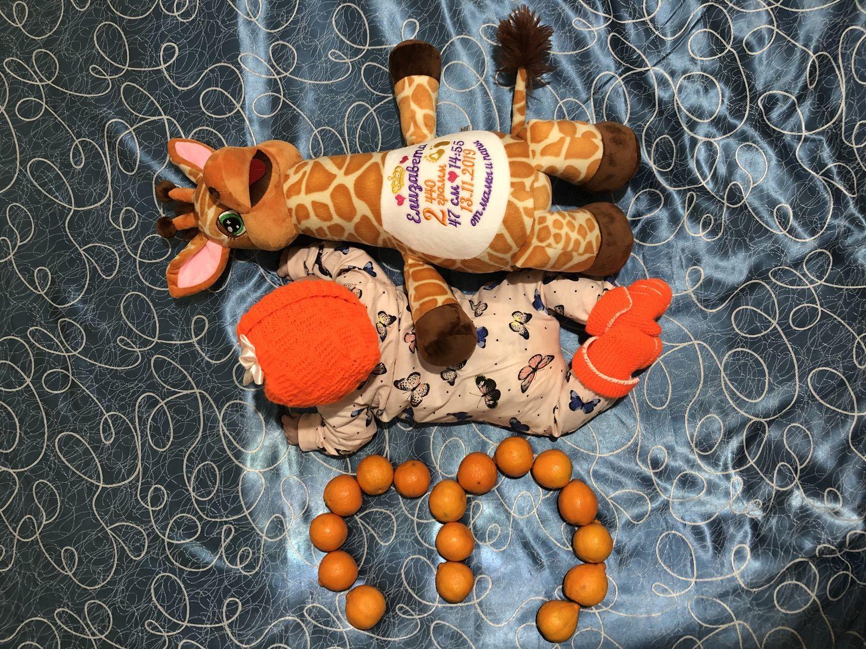 Photo №1 к отзыву покупателя Malygin Sergej о товаре Именная игрушка с индивидуальной вышивкой
