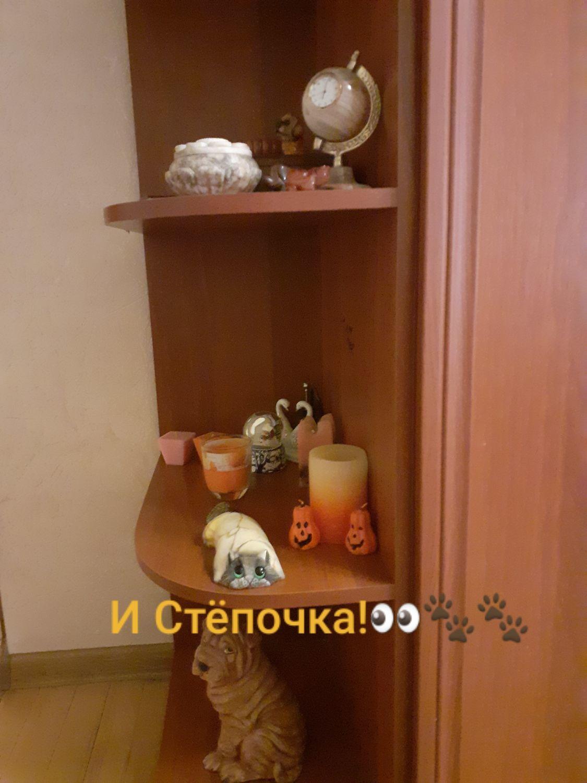 Photo №2 к отзыву покупателя Yuliya Egina о товаре Скульптура из натурального Уральского камня Ангидрит Кот