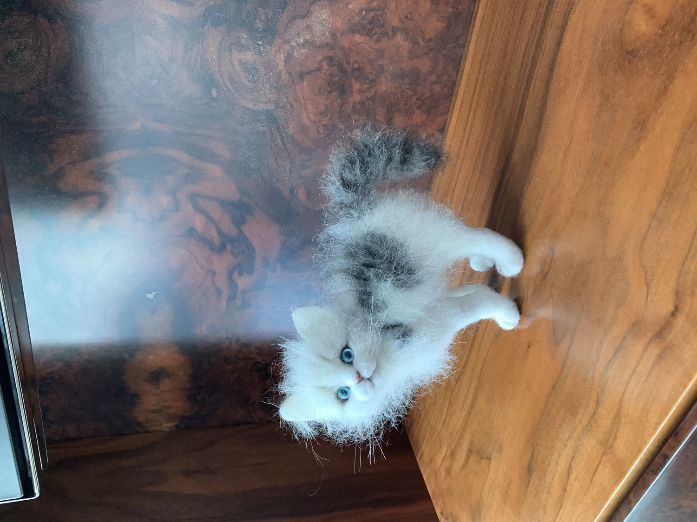 Фото №1 к отзыву покупателя Олеся о товаре Войлочная кошка на ладошке