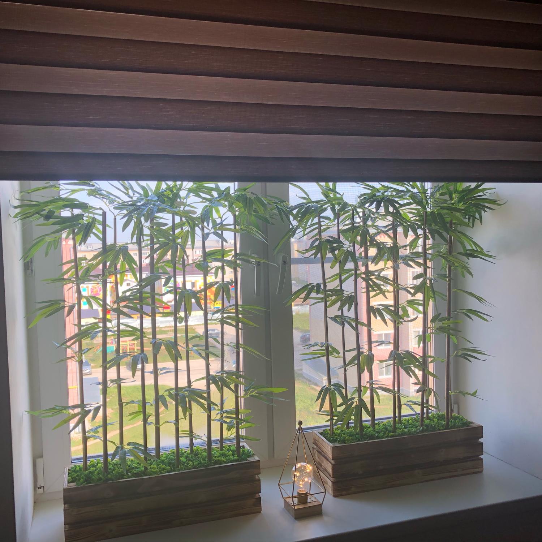 Фото №1 к отзыву покупателя Марина о товаре Деревья: Бамбук искусственный Изгородь из бамбука