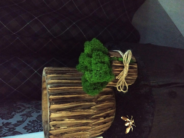 Фото №1 к отзыву покупателя Валерий о товаре Элементы интерьера: Стабилизированный мох в деревянном кашпо и еще 1 товар