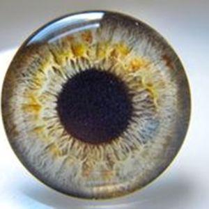 10мм глазки стеклянные