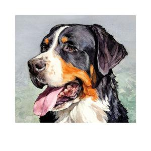 Портреты животных. Собаки