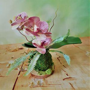 Композиции с орхидеями
