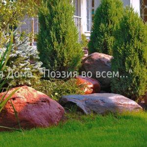 ЛАНДШАФТНЫЙ ДИЗАЙН. 3D ПРОЕКТЫ.