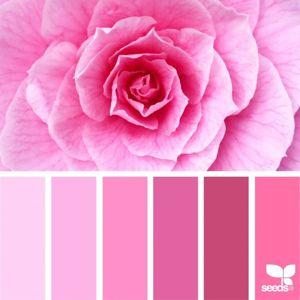 Розовые товары