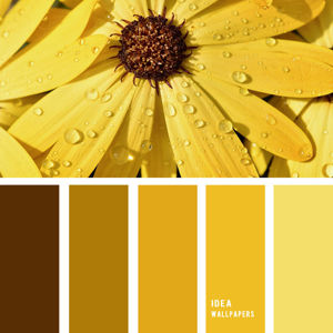 Желтые товары