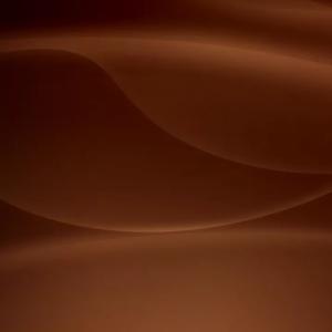цвет коричневый с оттенками