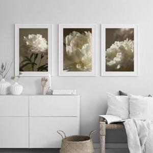 Постеры Цветы