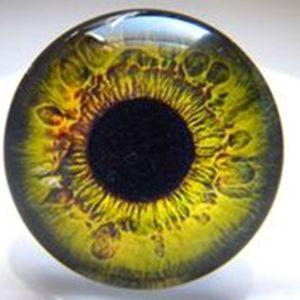 18мм глазки стеклянные