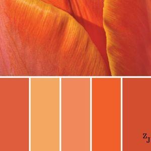 Оранжевые товары