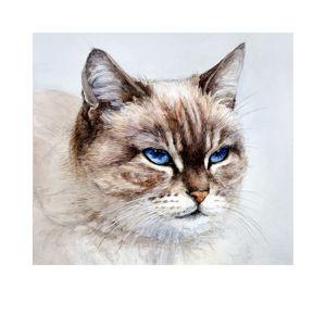 Портреты животных. Кошки