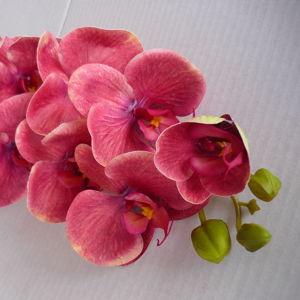 Цветы из силикона и латекса
