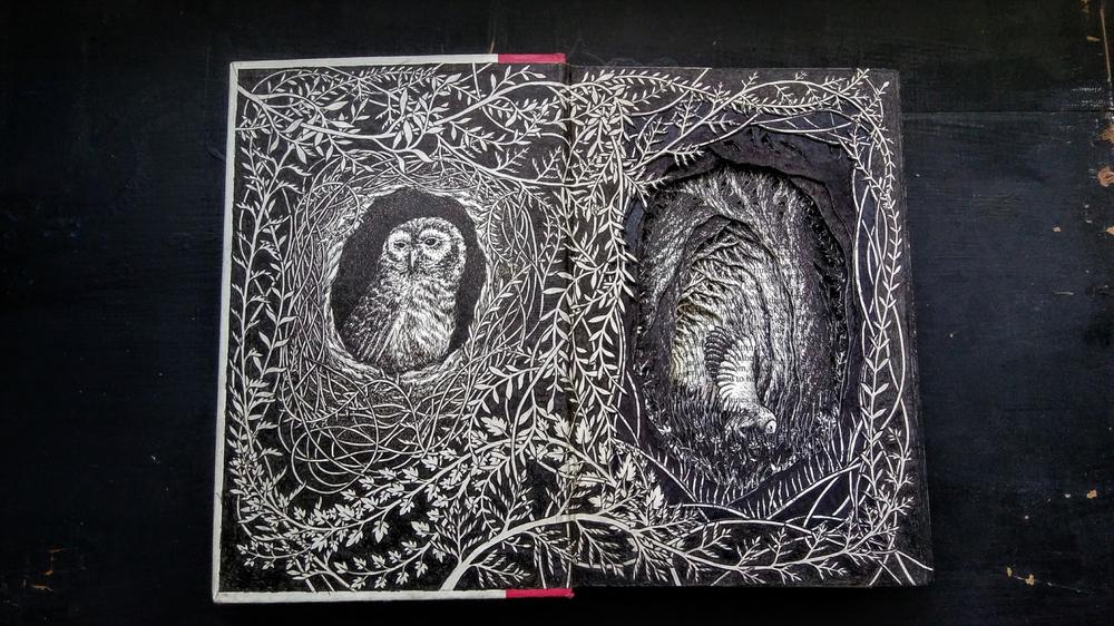 Isobelle Ouzman создаёт удивительные многослойные композиции, вырезанные из старых книг, фото № 34