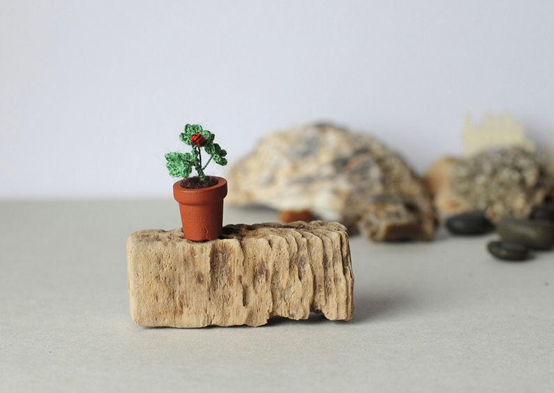 Мелочь, а приятно! Мастерица вяжет крючком крошечные цветы и растения, которые помещаются на подушечке пальца, фото № 12