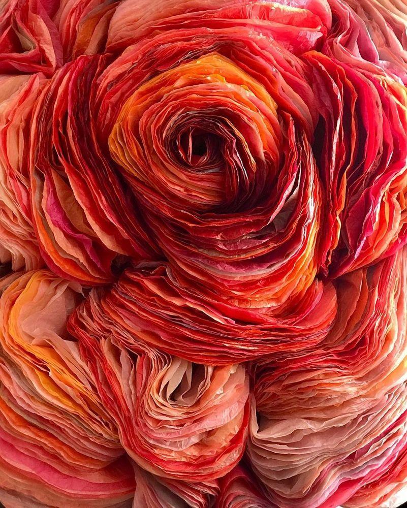 Потрясающие бумажные цветы датской художницы arianne riksen-cott ansen, фото № 35