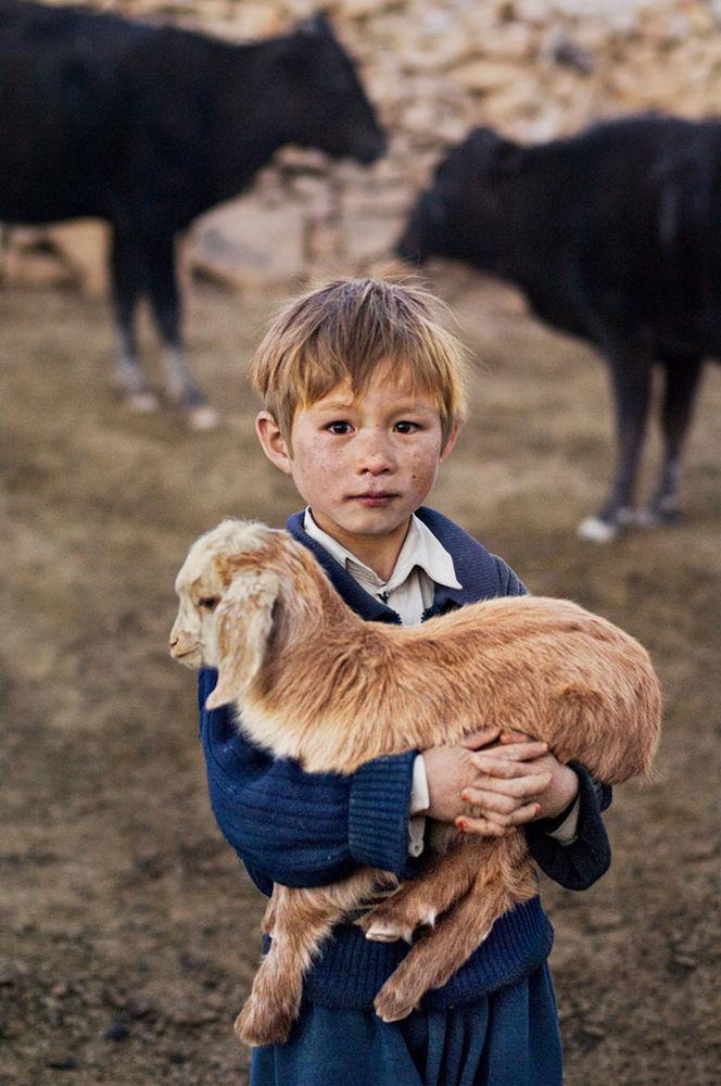 Мы с тобой одной крови 35 невероятных кадров из жизни людей и животных от легендарного фотографа Стива МакКарри, фото № 18