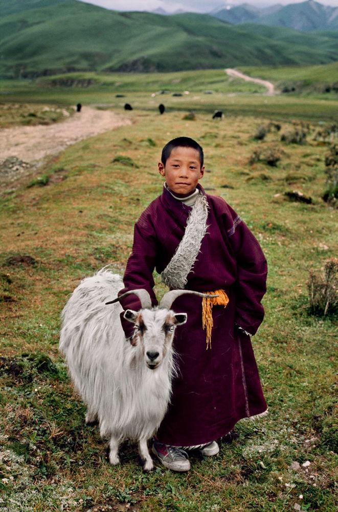 Мы с тобой одной крови 35 невероятных кадров из жизни людей и животных от легендарного фотографа Стива МакКарри, фото № 26