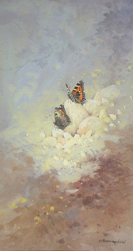 Мир Бабочек Бенингфилда, фото № 30