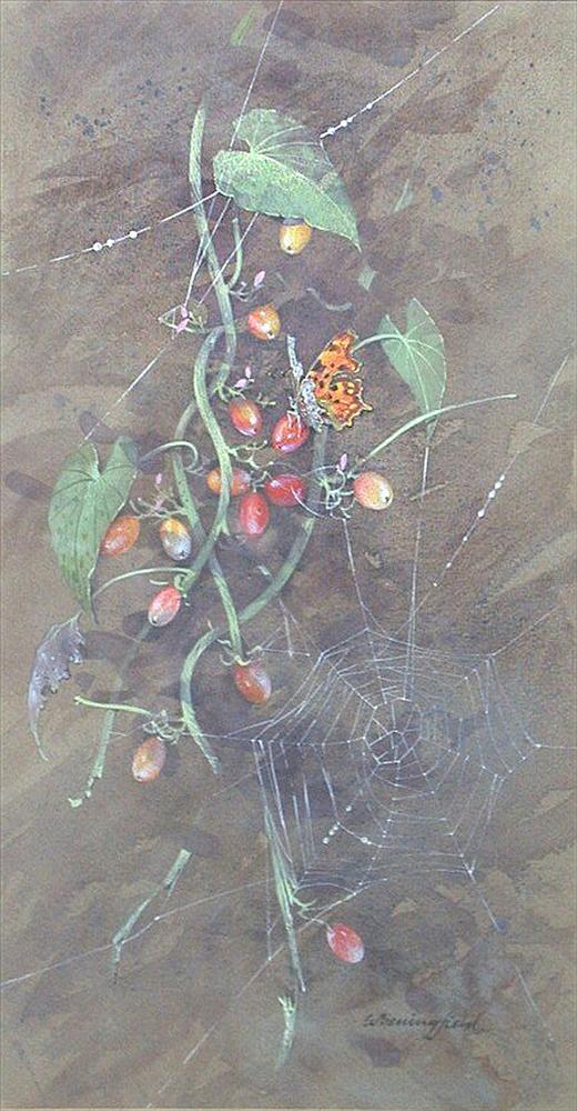 Мир Бабочек Бенингфилда, фото № 29