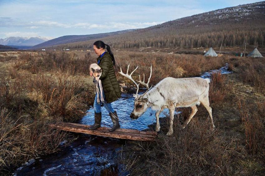 Мы с тобой одной крови 35 невероятных кадров из жизни людей и животных от легендарного фотографа Стива МакКарри, фото № 28