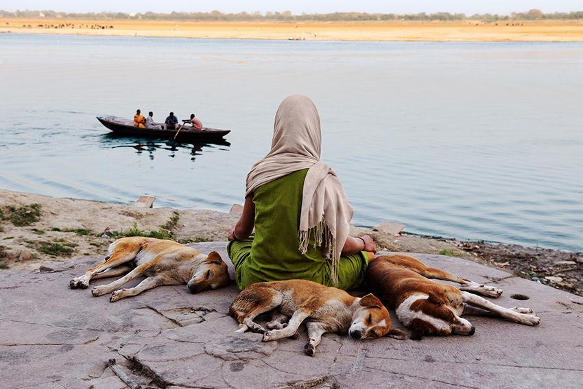 Мы с тобой одной крови 35 невероятных кадров из жизни людей и животных от легендарного фотографа Стива МакКарри, фото № 10