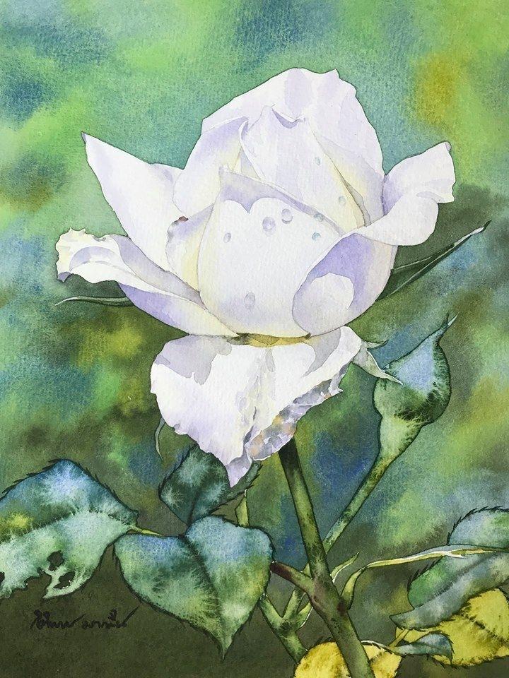 Watercolour Virtuoso: Kitipong Ti, фото № 1