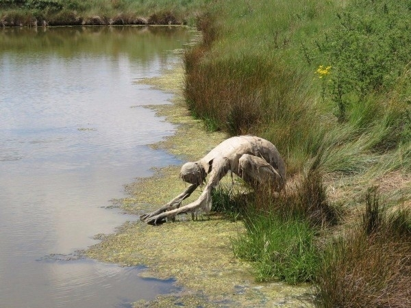 Скульптуры на природе. Пугающие и необычные, фото № 3
