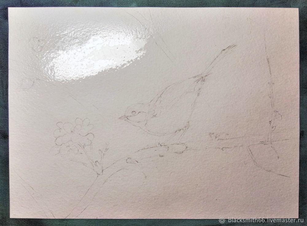 Рисуем синицу на цветущей ветке акварелью, фото № 4