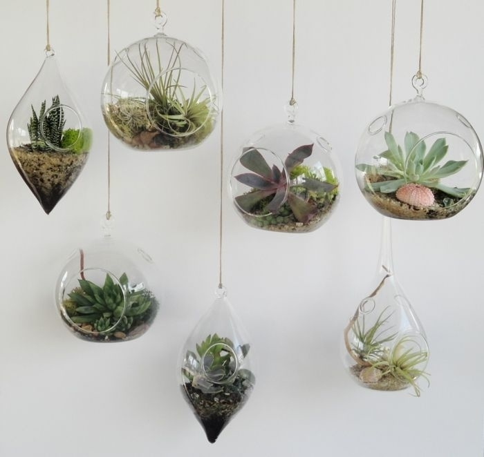 Beauty and Simplicity: 36 Interior Ideas with Succulents, фото № 6