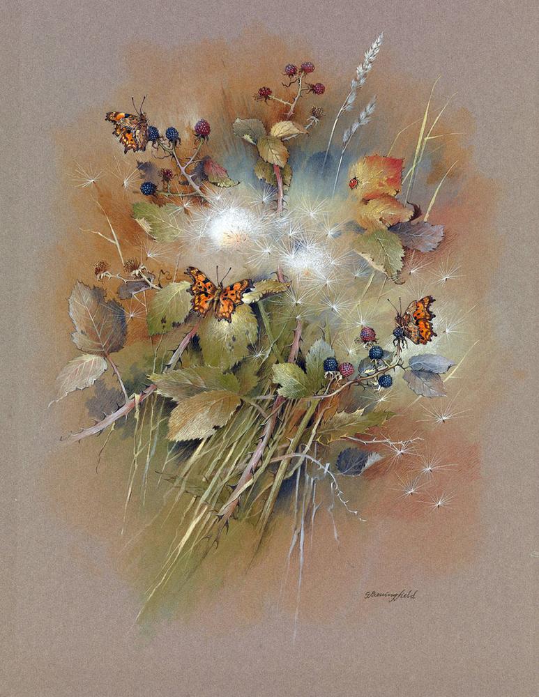 Мир Бабочек Бенингфилда, фото № 22