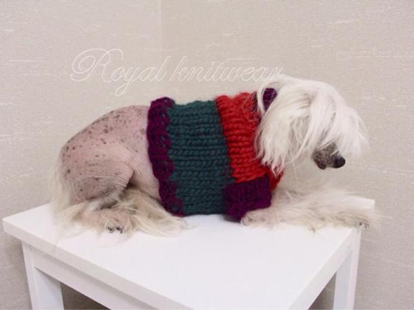 Одежда для собак своими руками 7 мастер-классов + много полезного!, фото № 3