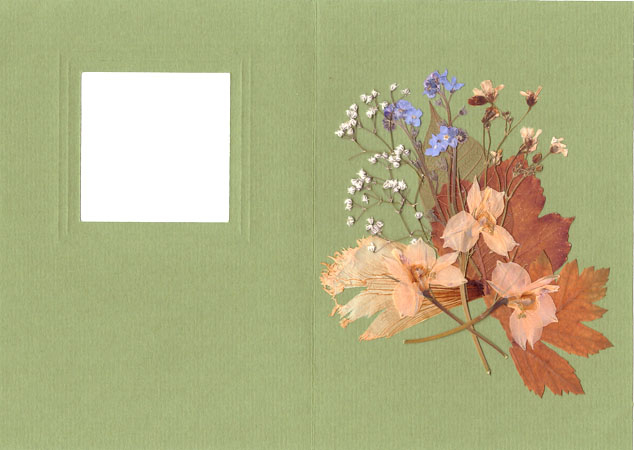 Creating Card in ''Pressed Floristry'' Technique, фото № 5