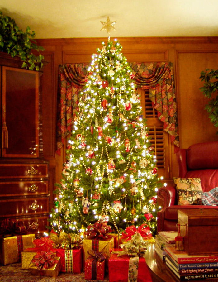 картинка рождественская елка в англии решительности