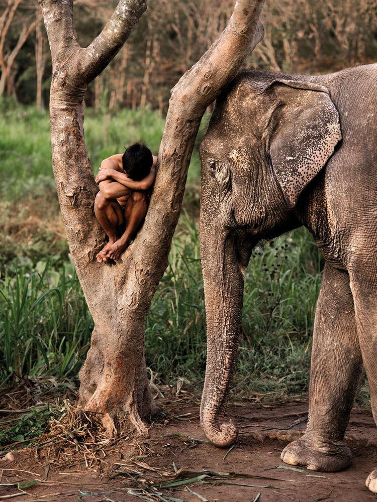 Мы с тобой одной крови 35 невероятных кадров из жизни людей и животных от легендарного фотографа Стива МакКарри, фото № 27