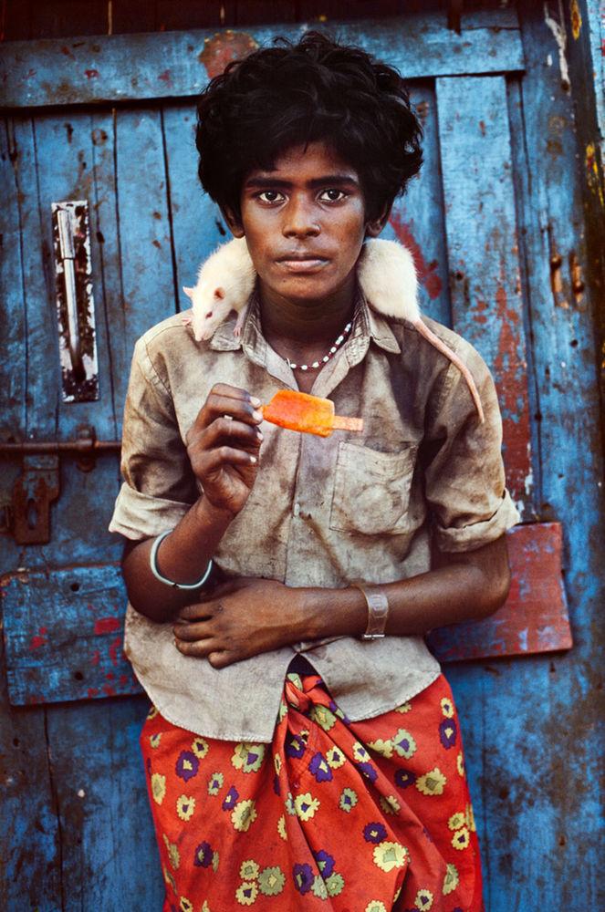 Мы с тобой одной крови 35 невероятных кадров из жизни людей и животных от легендарного фотографа Стива МакКарри, фото № 13