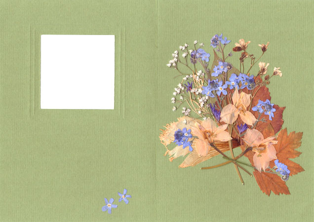 Creating Card in ''Pressed Floristry'' Technique, фото № 6