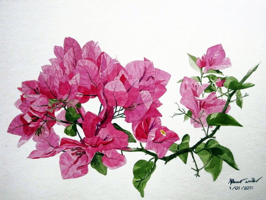 Watercolour Virtuoso: Kitipong Ti, фото № 5