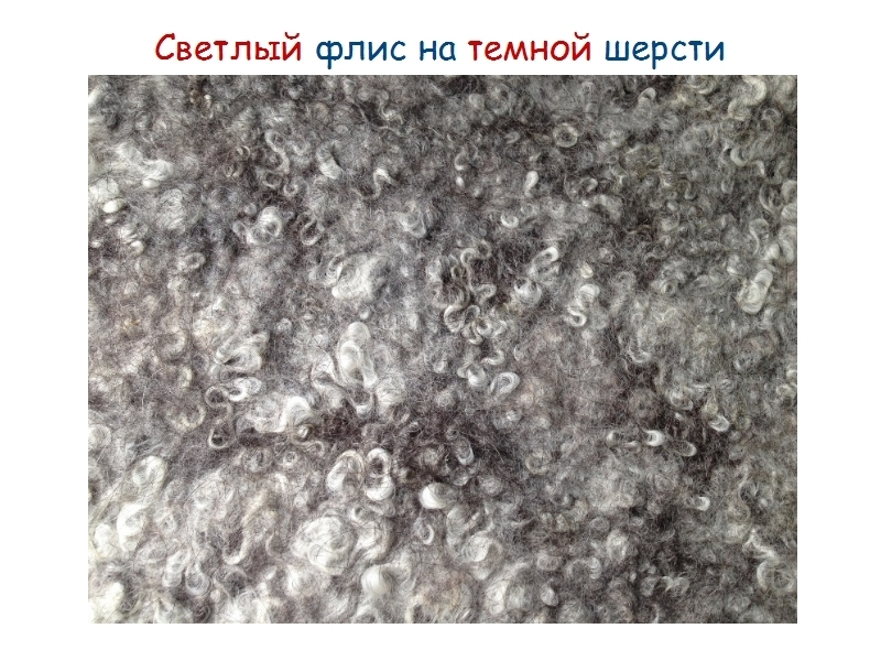 Изучаем тонкости валянияс флисом, фото № 28