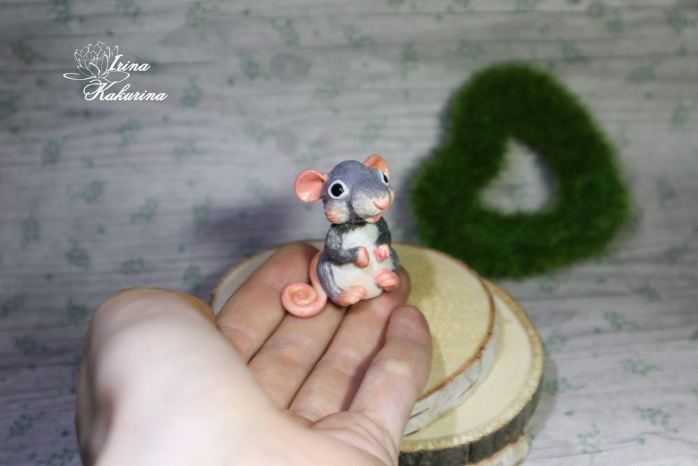 мылоформа, крыса
