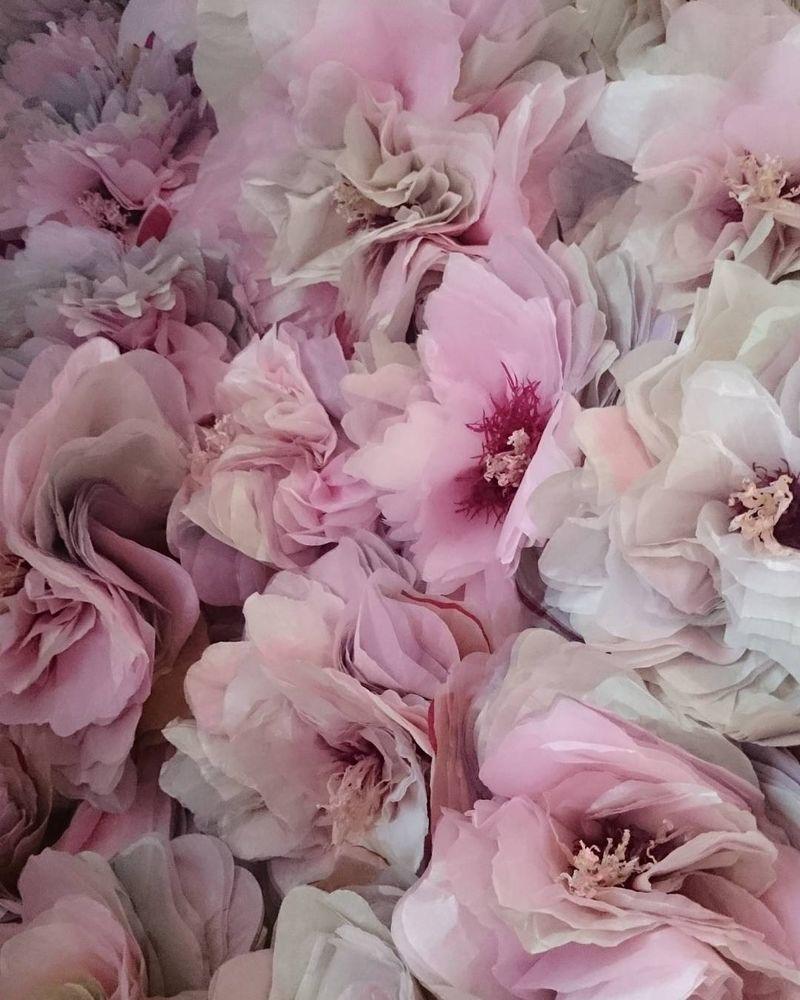 Потрясающие бумажные цветы датской художницы arianne riksen-cott ansen, фото № 8