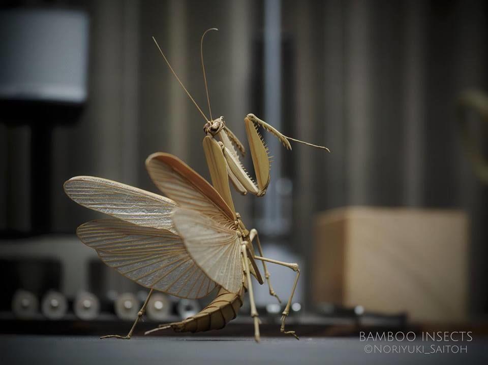 Бамбуковые насекомые Noriyuki Saitoh