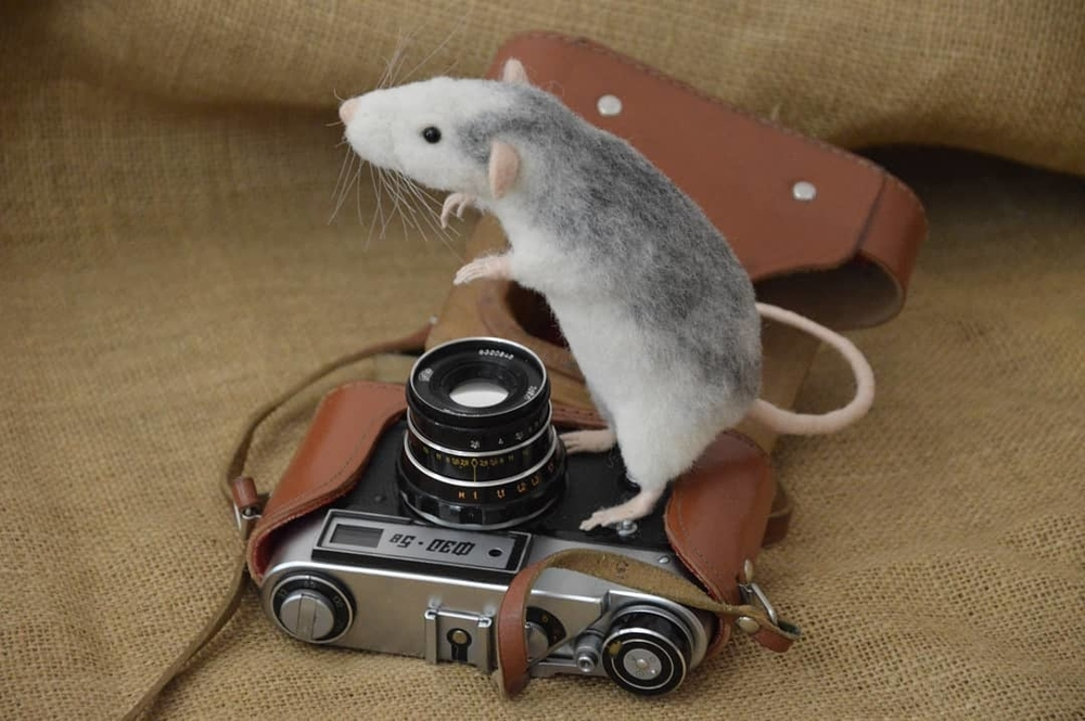 Life Of Outstanding Mice: Felted Rodents Go To Stores, Play Sports & Take Photos, фото № 4