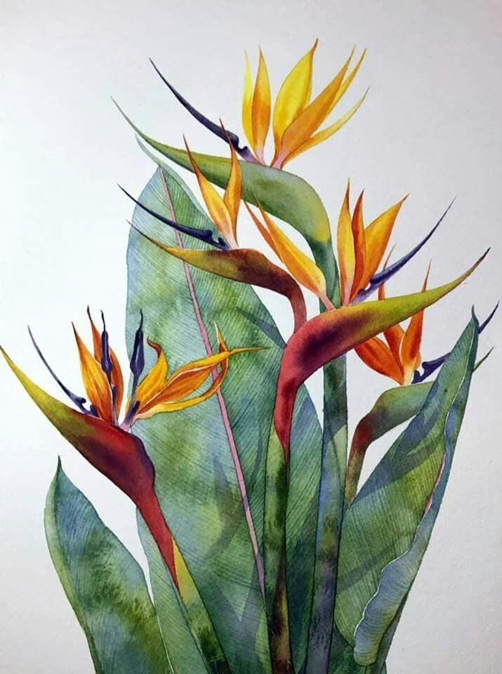 Watercolour Virtuoso: Kitipong Ti, фото № 28