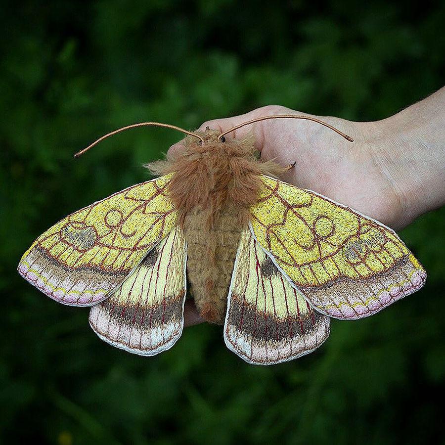 Ловец бабочек: пугающе реалистичные насекомые Emily Yeadon, от которых невозможно отвести глаз