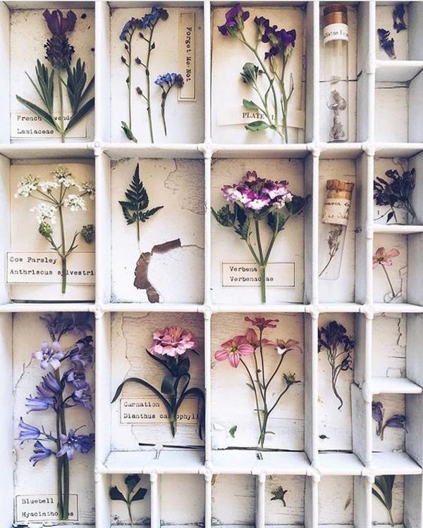 Коллекционируем красиво: 40+ впечатляющих полок для хранения коллекций, фото № 10